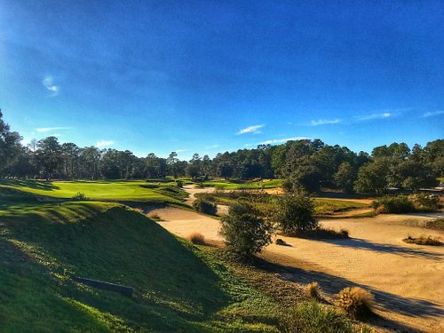 One of our top-rated courses in Florida is the Tom Fazio-designed Pine Barrens course at World Woods, which provides a dramatic taste of famous Pine Valley just north of Tampa.