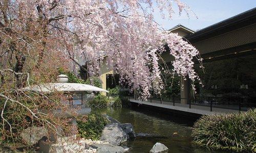 Akishima 2021 Best Of Akishima Japan Tourism Tripadvisor