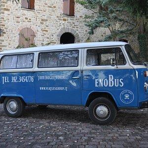 Enobus