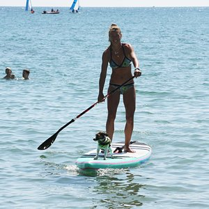 Lyme Regis SUP with Daisy