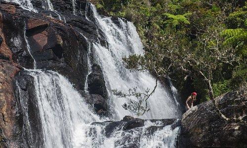 Berge überragen die romantischen Landschaften in Sri Lanka. Üppige Wälder, sprudelnde Wasserfälle und goldene Strände prägen die Natur