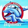 Delphinus D