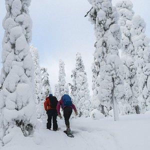 Go on a snowshoe adventure