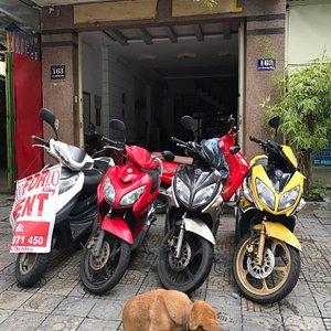 Mango Motorbike Rentals