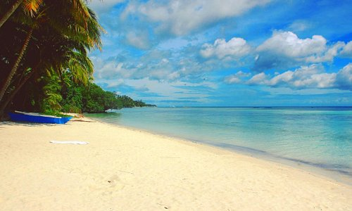 White stretches of sand lined with palm trees - Solangon Beach in Siquijor is one of my favorite beaches in the Philippines.