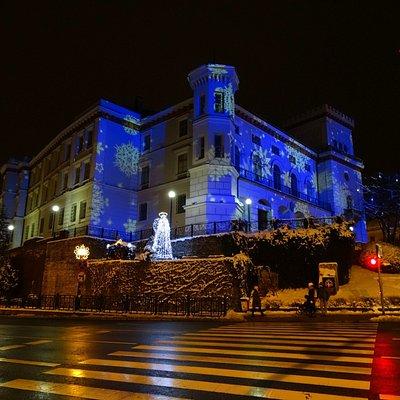 W zimowej, nocnej scenerii