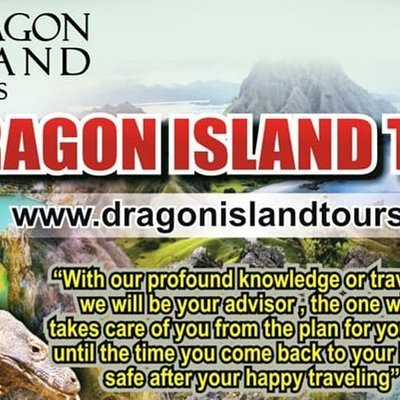 """Dragon Island Tours """"let us show you the world"""""""