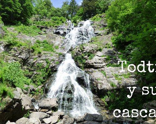 Las cascadas de Todtnau son las segundas con mayor altura de salto de toda la Selva Negra, y quizás las más espectaculares que hay en estos bosques. Una bonita circular que os proponemos.
