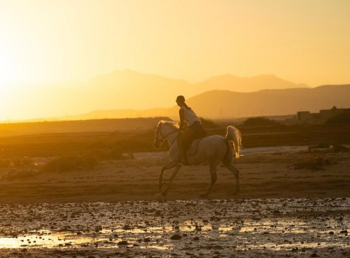 Fantastic sunset rides by the beach in El Gouna