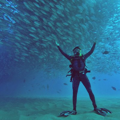 Diving Station service in Cabo Pulmo is a great experience.