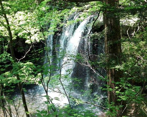 ・観瀑台からの乙女の滝