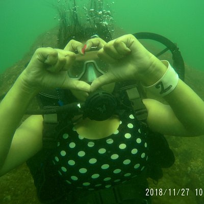 #Love #live #Jive #Dive