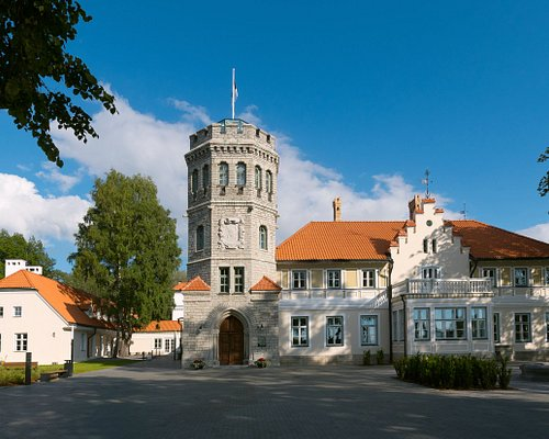 Maarjamäe Palace was commissioned by Count Anatoli Orlov-Davydov from St. Petersburg. The historicist limestone summer residence on the seashore was designed by architect Robert Gödicke and built in 1874.  Now it is a branch museum of the Estonian History Museum i