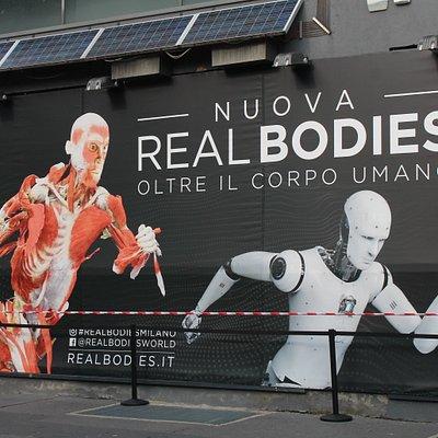 Nuova real bodies