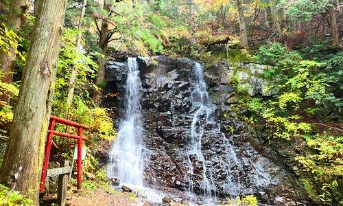 これが母の白滝です。とても素敵な滝です。