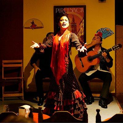 Espectáculo de flamenco por la noche