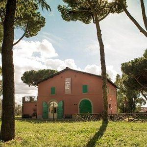 Veduta del Museo di Archeologia per Roma