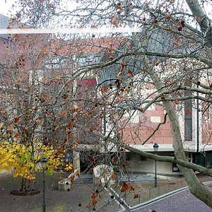 Blick von der Stadtbibliothek