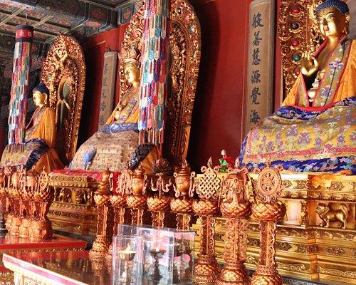 The Lama Temple Spring Festival Ceremony