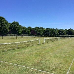Grass Tennis Courts