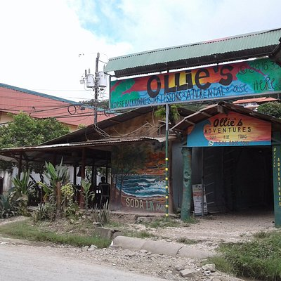 Our Ollie's Adventures shop Main Road, 30 meters south/mountain side of Super Ronny #1