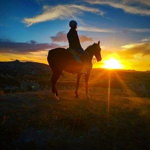 cappadocia horse