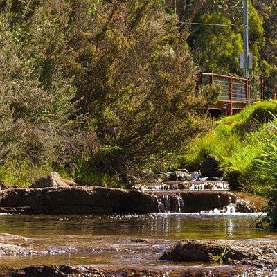 New Town Rivulet Park