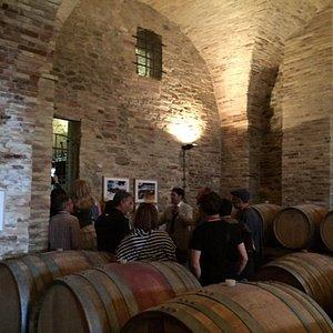 Visite con degustazione presso la bottaia al Palazzo De Sterlich di Castilenti - Te dell'azienda san Lorenzo Vini