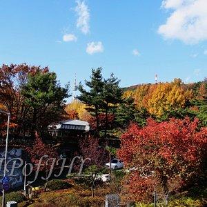 from the entrance of Namsan Outdoor Botanical Garden