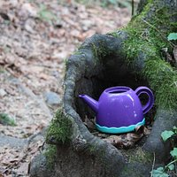Little child's toy teapot