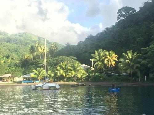 zatoka cumberland karaibskie cumowanie  rufowa do palmy