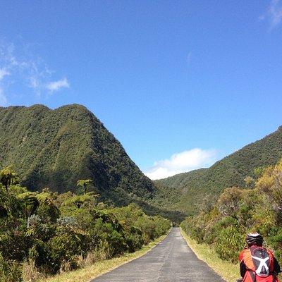 Excursion Bélouve - location de vélos Ile de La Réunion avec Vélo Explore Réunion