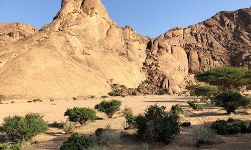 مناطق برية بمنطقة الرياض