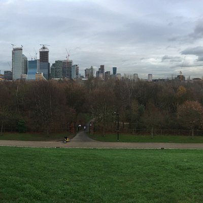 View of Canary Wharf from top of Stave Hill - December 2018