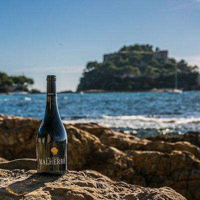 La cuvée Malherbe, cuvée emblématique de notre vignoble marin.