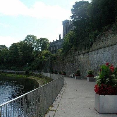 A walk along the River Nore, three of three