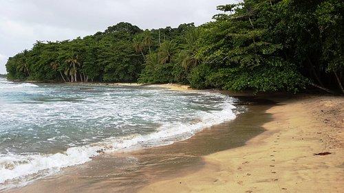 Caribbean beach of Costa Rica!