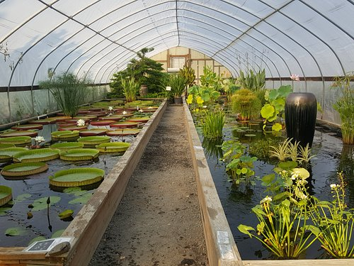A full view of the tropical greenhouse