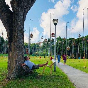 Hobbies of Singaporeans