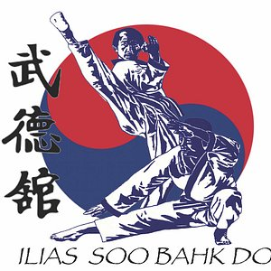 We offer classes in the traditional Korean martial art of Soo Bahk Do Moo Duo Kwan. Ask about our free trial!