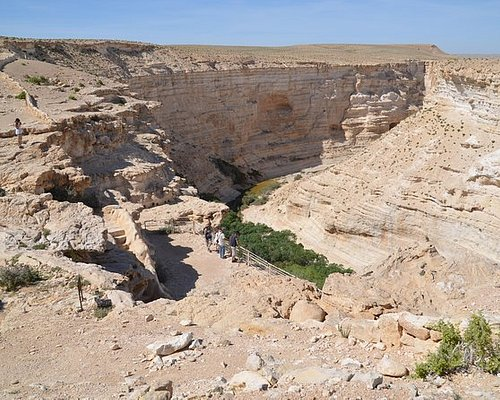 The Heart of the Negev One day tour
