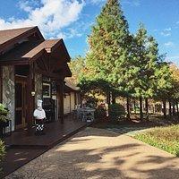 星期三 ✍︎ 木屋陽光藍天白雲, 今天美的像一幅畫。 - ➞追蹤官方Instagram: https://www.instagram.com/butterfly_bridge/