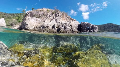 Hansen bay is a great spot to see fish, sea turtles and more.