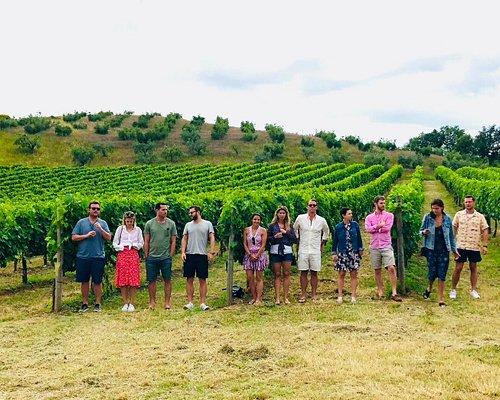 wine tour in montepulciano