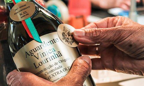 www.doc-lourinha.pt
