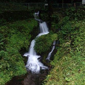 箱島湧水:山雀(ヤマガラ)の瀑