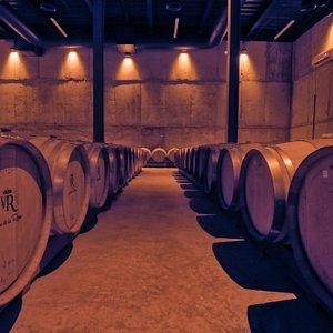Viñedos de la reina produce su propio vino, es por esto que la calidad se degusta en cada copa.