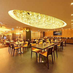 Oferim mâncăruri pentru toate gusturile la restaurantul nostru elegant cu un meniu de prima clasă.