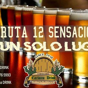 Ven a disfrutar de 12 tipos de cerveza artesanal en CACTACEA DRINK EN SANTA CRUZ GALAPAGOS