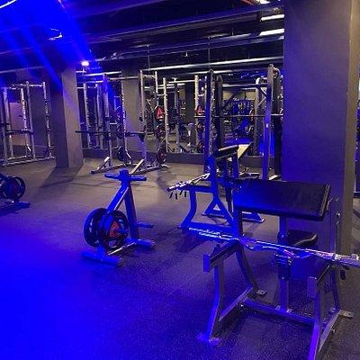 Fitness area - Hammer Strength/ Life Fitness